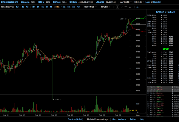 Il flash crash del bitcoin